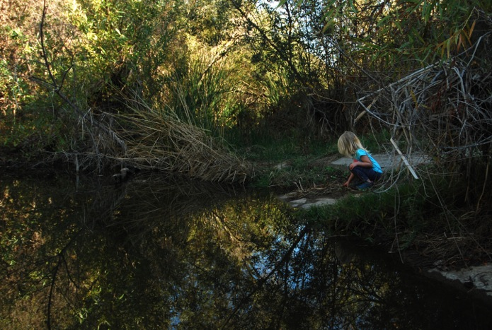 San Diego resident, MacKayla Conkey (3), stoops to look into a pond off the Grinding Rocks Trail in Mission Trails Regional Park. Photo by Anna Conkey